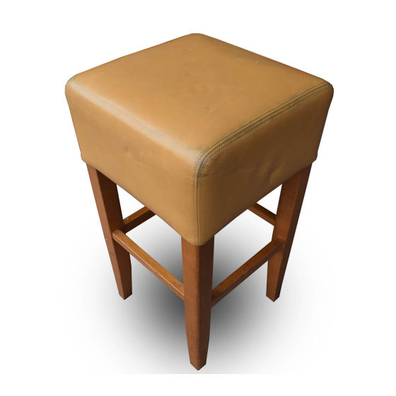 x6 Leather Poseur Stools
