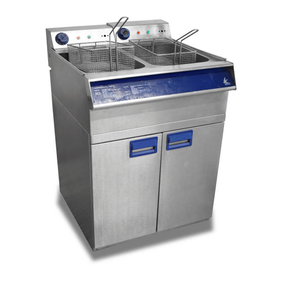 Falcon Kestrel Twin Tank Fryer
